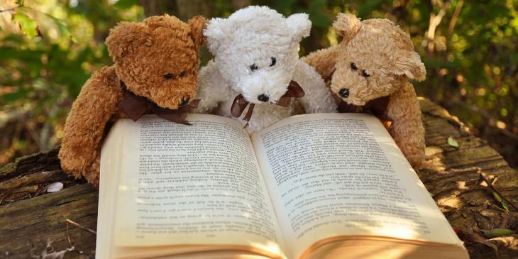 beren lezen boek