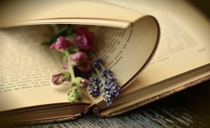 Boekenkijkje